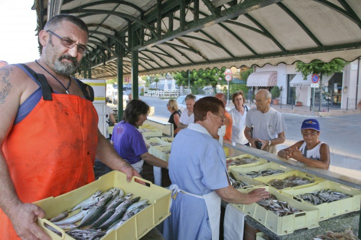 "Bellaria Igea Marina, fish market<br /><a href=""http://static.riviera.rimini.it/tl_files/gallerie/orig/img_4955-bellaria-pescheria.jpg.zip"" target=""_blank"" class=""photo-download"">Download high resolution image</a>"