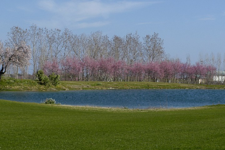 "San Giovanni in Marignano, Riviera Golf<br /><a href=""https://static.riviera.rimini.it/tl_files/gallerie/orig/campo-2.jpg.zip"" target=""_blank"" class=""photo-download"">Download high resolution image</a>"