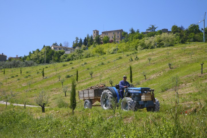 """Countryside, Montegridolfo<br /><a href=""""https://static.riviera.rimini.it/tl_files/gallerie/orig/montegridolfo-16.jpg.zip"""" target=""""_blank"""" class=""""photo-download"""">Download high resolution image</a>"""